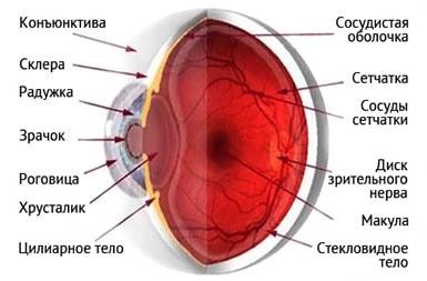 Лазерная коррекция зрения на сколько лет